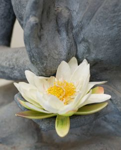 The Sanctuary Buddha & Lotus Fkower