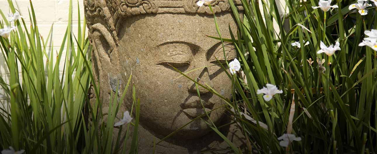 The Sanctuary - Buddha Welcome